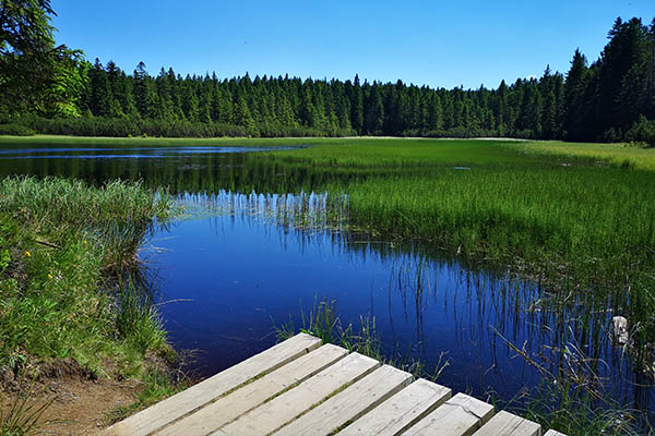 Črno jezero pohorje