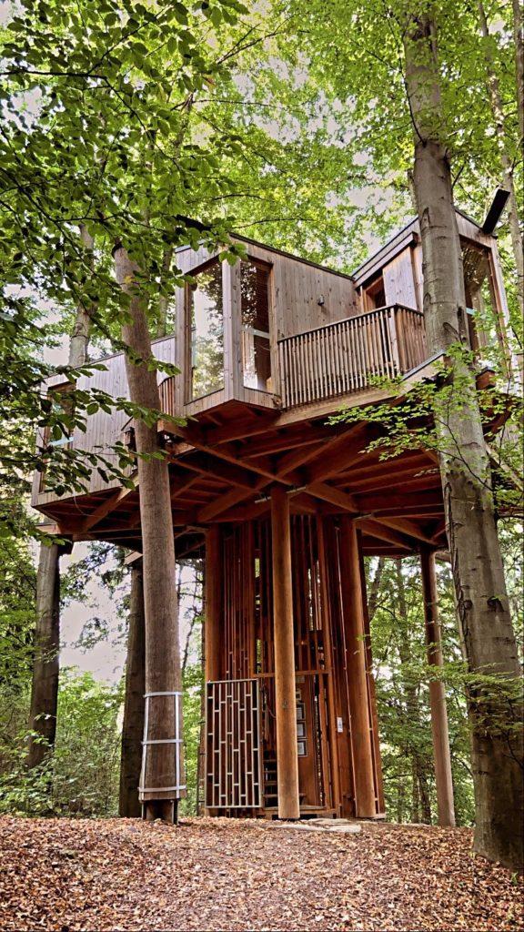 drevesna hiša mestni gozd celje